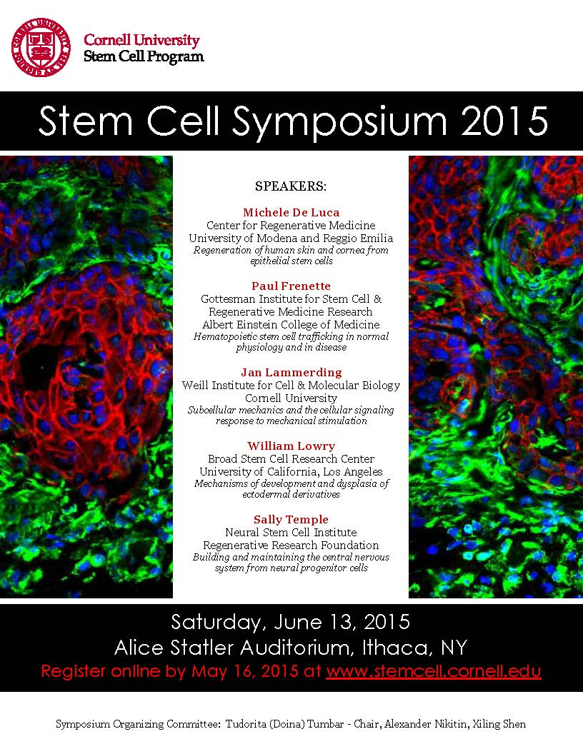 5th Stem Cell Symposium poster